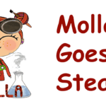 Molla Goes Steam